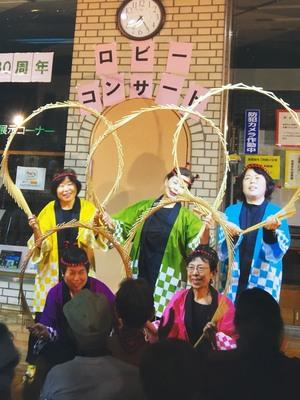 南京玉簾1.JPGのサムネイル画像