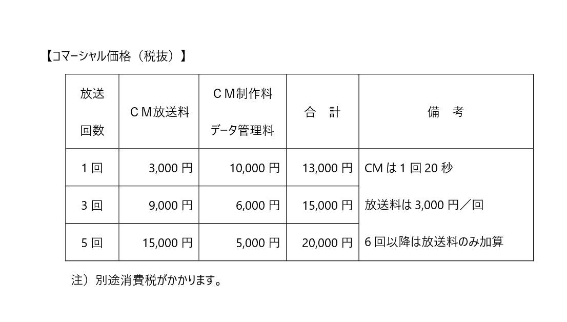 飯島真理コマーシャル価格 (1)-001.jpg