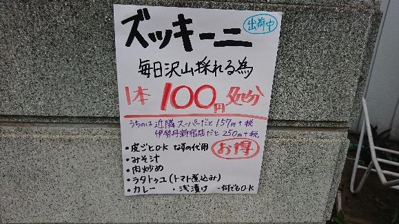 201080613b.JPG