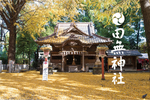 tanashi_w.jpg