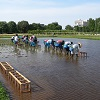 『食・農・森』(食べる・作る・育む)~東大生態調和農学機構から 18年3月13日 第32回のゲストは 加藤洋一郎さんです!
